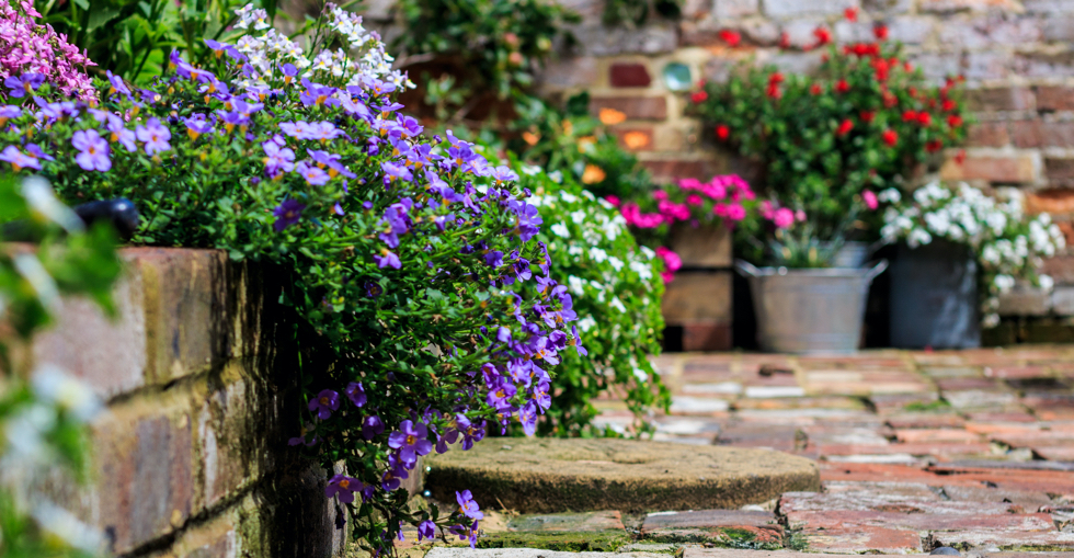 Garden centre marketing